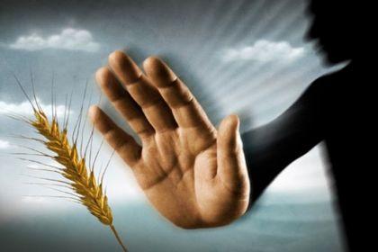 Gluten Intolerance Versus Celiac Disease