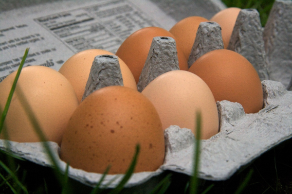 The Health Benefits Of Pastured Eggs