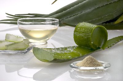 The Health Benefits of Aloe