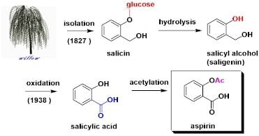 Aspirin Alternatives: Salicin Containing Herbs