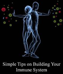 building_immune_system