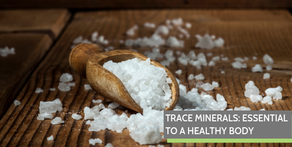 Trace Minerals: Essential to a Healthy Body